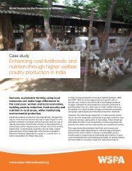 Enhancing rural livelihoods and nutrition through higher ... - WSPA
