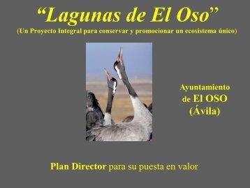 Plan Director - Premio Conama