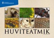 Loodusmuuseumi huviteatmik-kalender 2013 - Tartu Ülikooli ...