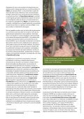 Accra 2011_esp.pdf - Fern - Page 5
