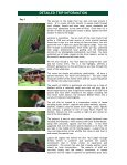 Costa Rica - Steppes Discovery - Page 3