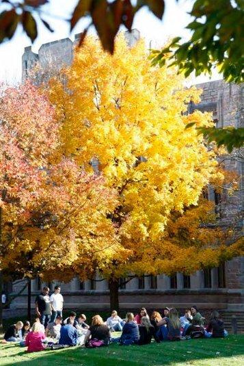 Academic Programs, Areas of Distinction - Butler University
