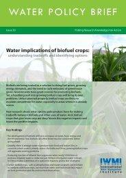 Water Implications of Biofuel Crops - International Water ...