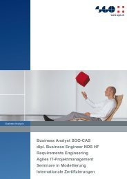 Business Analyst SGO Requirements Engineering Agiles IT ...