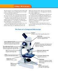 The Parts of a Compound Microscope - TeacherWeb