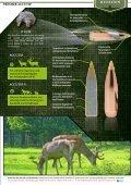 Remington 2013 - Waffen Braun - Seite 7