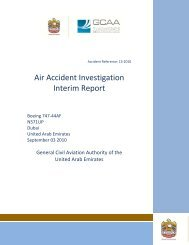 Air Accident Investigation Interim Report