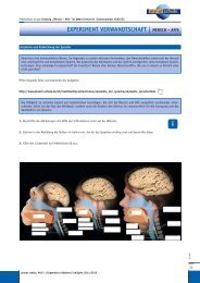Experiment Verwandtschaft - Mensch Affe - Planet Schule