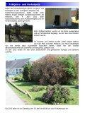Vorwort zum Erscheinen der Dorfzeitung - Dorferneuerungsverein ... - Seite 4
