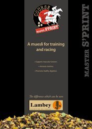 Download the specification sheet - Lambey