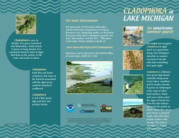 CLADOPHORA in - Wisconsin Department of Natural Resources