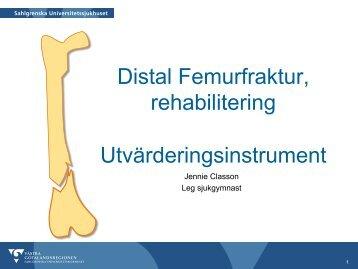 Distal Femurfraktur, rehabilitering Utvärderingsinstrument