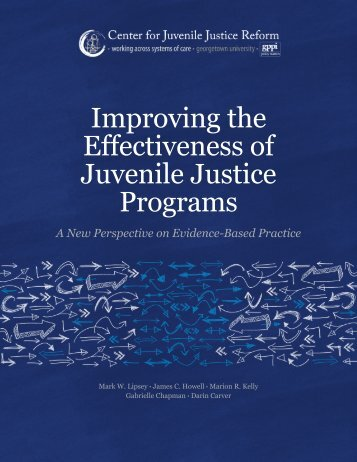Improving the Effectiveness of Juvenile Justice Programs: A New