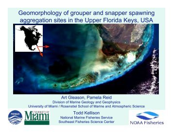 Geomorphology of grouper and snapper spawning aggregation ...