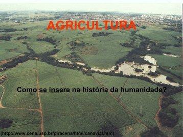 fase da agricultura primitiva - USP