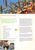 Vogelfutter selbst gemacht - Natur im Garten - Seite 2