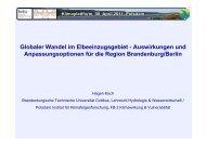 Globaler Wandel im Elbeeinzugsgebiet - Auswirkungen und ...