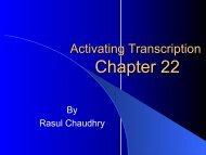 Activating TranscriptionF