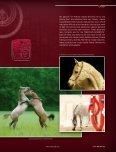 Photogallery - tutto arabi - Page 6