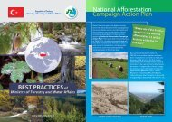 National Afforestation Campaign Action Plan