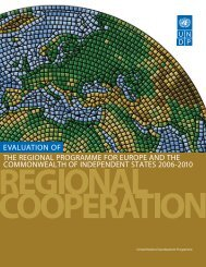 Evaluation of the Regional Programme for Europe and the CIS 2006 ...