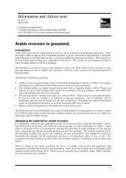 Arable reversion - RSPB