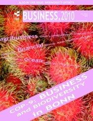 CBD Business Newsletter, Vol. 1, No.1 - Transsolar