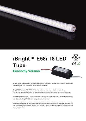 iBright™ E58i T8 LED Tube Economy Version - Del Lighting