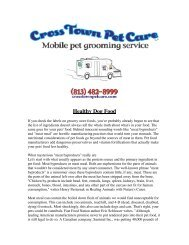 Healthy Dog Food - Cross Town Pet Care
