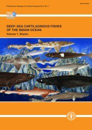 DEEP–SEA CARTILAGINOUS FISHES OF THE INDIAN OCEAN