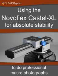 Novoflex Castel XL focusing rack digital photography macro tripod ...