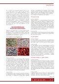Mincir Bio - Rebelle-Santé - Page 2