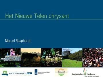 presentatie Marcel Raaphorst - Energiek2020
