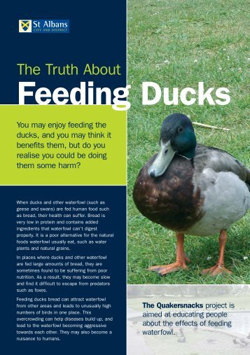Quackersnacks Leaflet - St Albans City & District Council