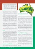 Red-eared Slider - Page 3