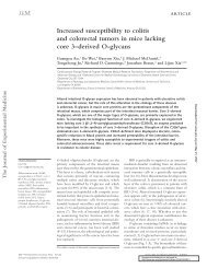 Increased susceptibility to colitis and colorectal tumors in mice ...