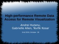 High-performance Remote Data Access for Remote Visualization