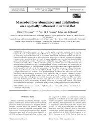 Macrobenthos abundance and distribution on a spatially patterned ...