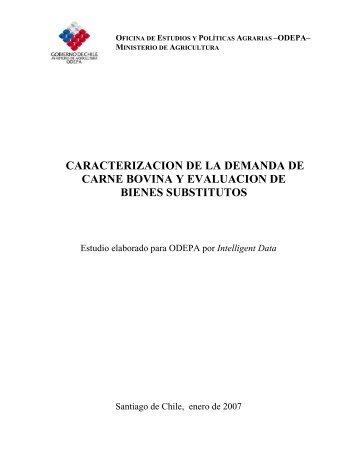 Caracterización de la demanda de carne bovina y ... - Odepa