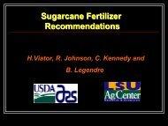 Sugarcane Fertilizer Recommendations