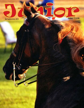 Spring/Summer 2013 - American Saddlebred Horse Association