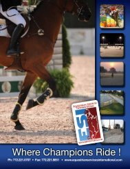 to Download Our Full Brochure - Equestrian Services International
