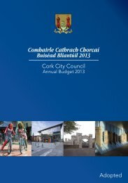 Adopted Budget 2013 - Cork City Council
