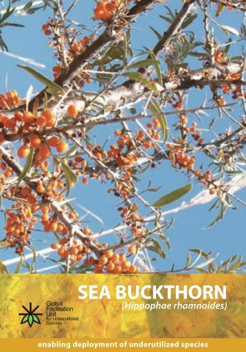SEA BUCKTHORN - Crops for the Future