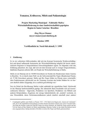 PDF-Datei - Meyer-Stamer