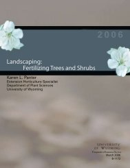 Landscaping: Fertilizing Trees and Shrubs