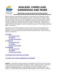AZALEAS, CAMELLIAS, GARDENIAS AND MORE - Star Nursery