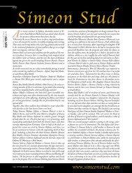 Simeon Stud - tutto arabi