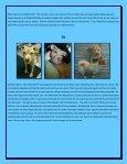Peanut Foxy - Rescue Dogs Rock - Page 3