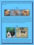 Peanut Foxy - Rescue Dogs Rock - Page 5